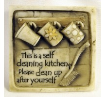 Self cleaning