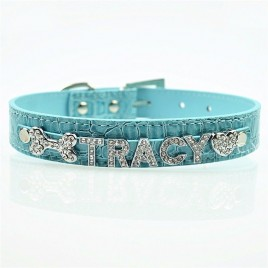 Personalized Pet Dog Collar